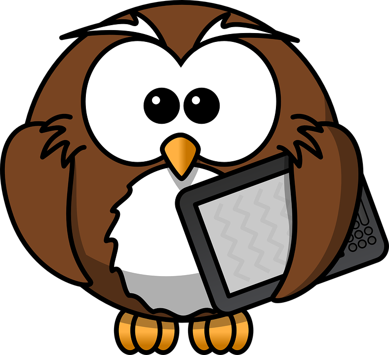owl-158411_960_720.png
